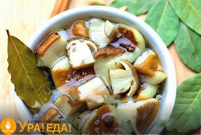 белые грибы в маринаде в чашке